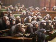 apaparlament
